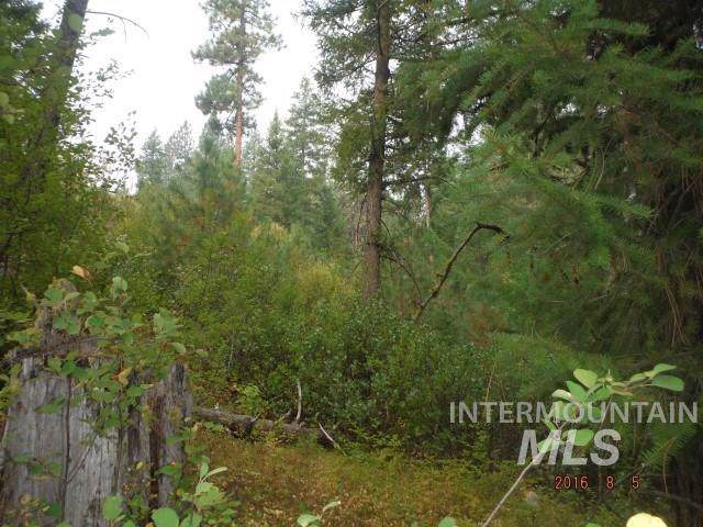 Lot 12 Payette River Ranchettes # 2, Horseshoe Bend, ID 83602 (MLS #98682771) :: Adam Alexander