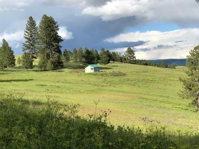 00 Pilgrim Ridge Road, White Bird, ID 83554 (MLS #98684717) :: Build Idaho