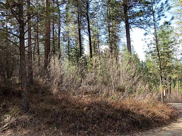 Lot 23 Valley High Rd., Garden Valley, ID 83622 (MLS #98685389) :: Juniper Realty Group