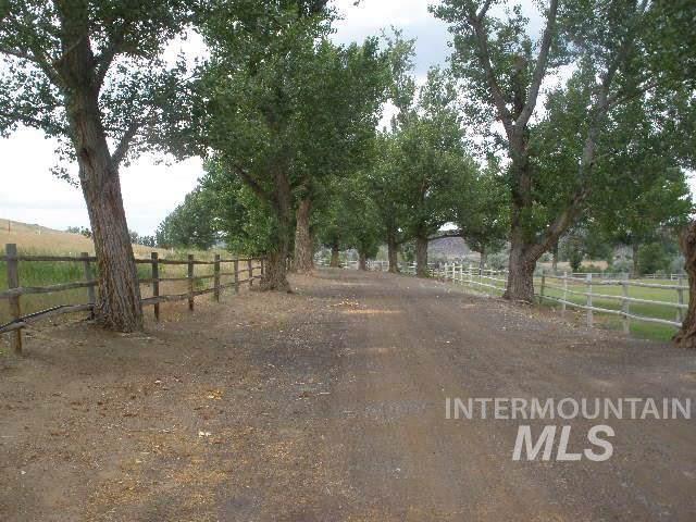 4521 Mesa View Rd, Buhl, ID 83316 (MLS #98687063) :: Adam Alexander