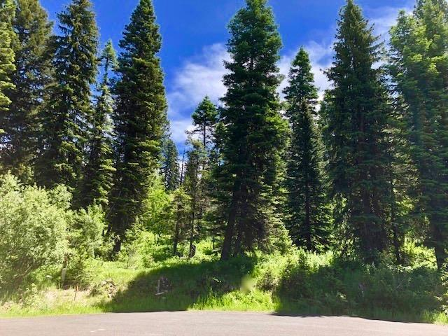 1140 Bellflower Place, Mccall, ID 83638 (MLS #98688923) :: Full Sail Real Estate