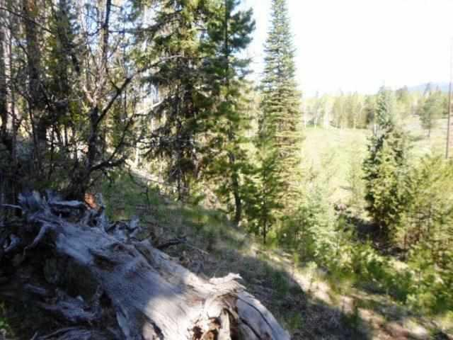 945 Pine Terrace Dr., Mccall, ID 83638 (MLS #98691968) :: Full Sail Real Estate