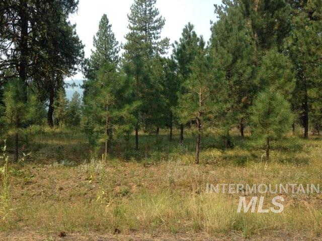 LOT 19 Blackhawk Lake Dr., Mccall, ID 83638 (MLS #98707056) :: Juniper Realty Group