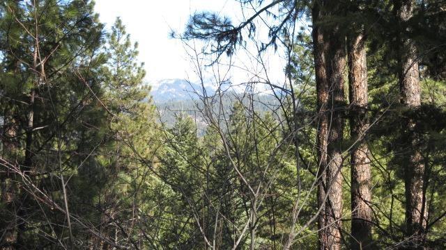 Lot 32 Mustang Way, Garden Valley, ID 83622 (MLS #98720488) :: New View Team