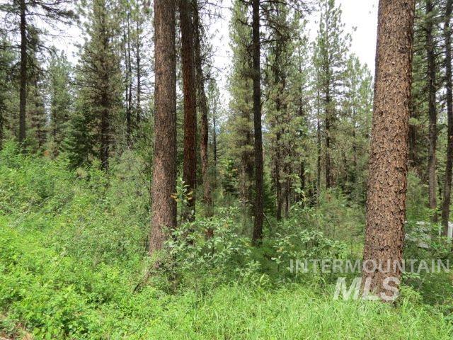 Lot 3 Valley High Rd., Garden Valley, ID 83622 (MLS #98720829) :: Jon Gosche Real Estate, LLC