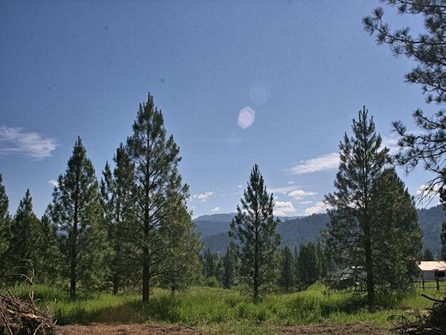 160 Scriver Woods, Garden Valley, ID 83622 (MLS #98734003) :: Boise River Realty