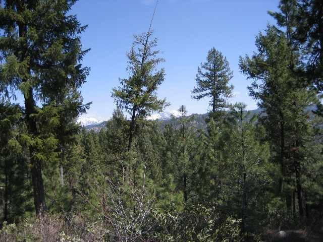 197 Hazel Place, Donnelly, ID 83615 (MLS #98735504) :: Full Sail Real Estate