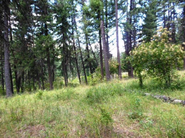 Norton Knob Lane, Orofino, ID 83544 (MLS #98740539) :: Boise River Realty