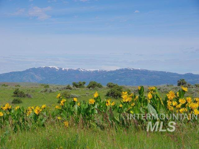 TBD N Grays Creek Road, Indian Valley, ID 83632 (MLS #98761551) :: Boise River Realty