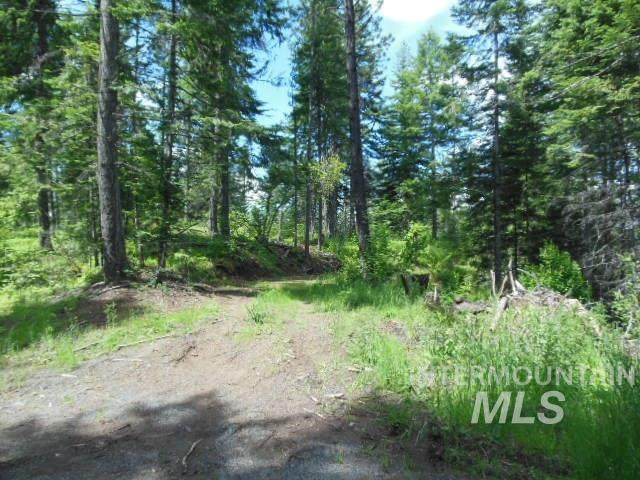 Parcel 2 Johnston's Mill Road, Orofino, ID 83544 (MLS #98772179) :: Jeremy Orton Real Estate Group