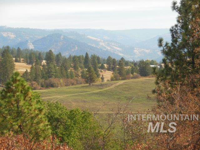 102 Havelock Grade, Lenore, ID 83541 (MLS #98782626) :: Jeremy Orton Real Estate Group