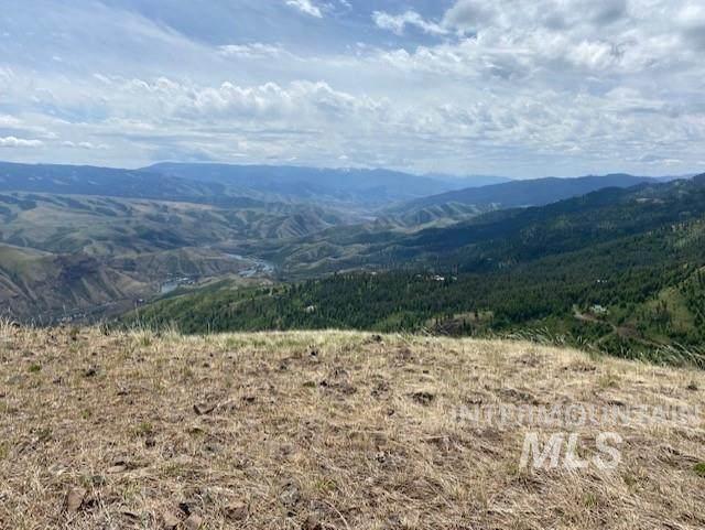 Lot 30 Elk Run Rd, Cottonwood, ID 83522 (MLS #98798180) :: Team One Group Real Estate