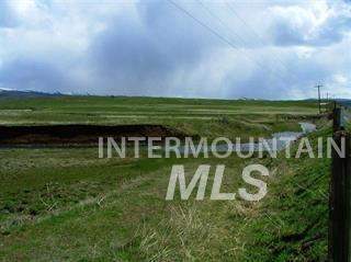 1731 N Crane Rd, Midvale, ID 83645 (MLS #98679419) :: Jon Gosche Real Estate, LLC