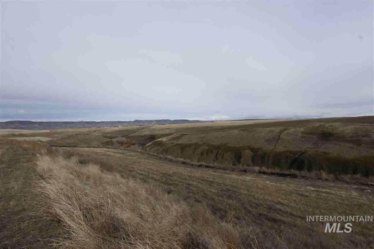 3217 Hidden Valley Loop - Photo 1