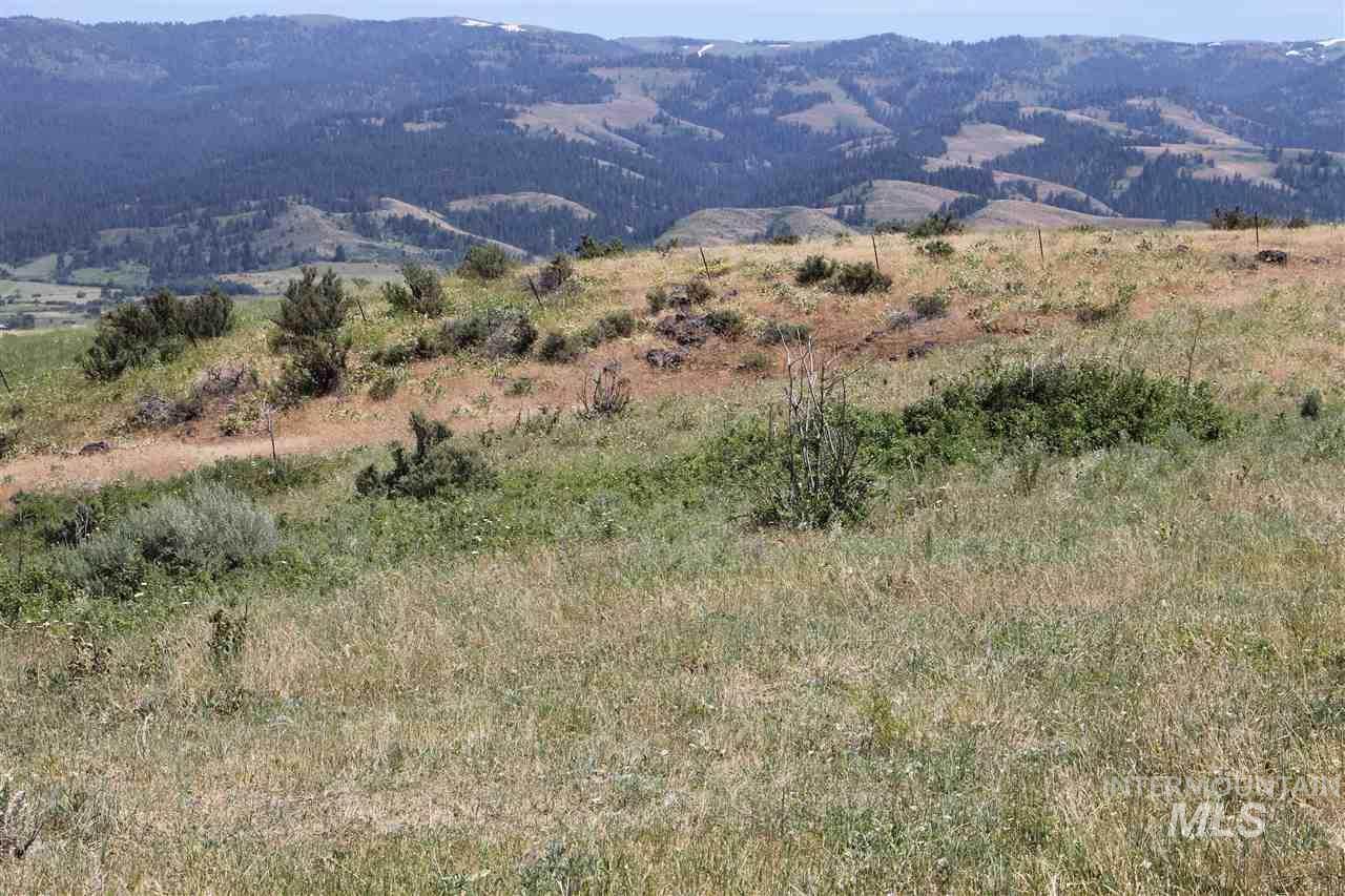 Coyote Run - 80 Acres - Photo 1