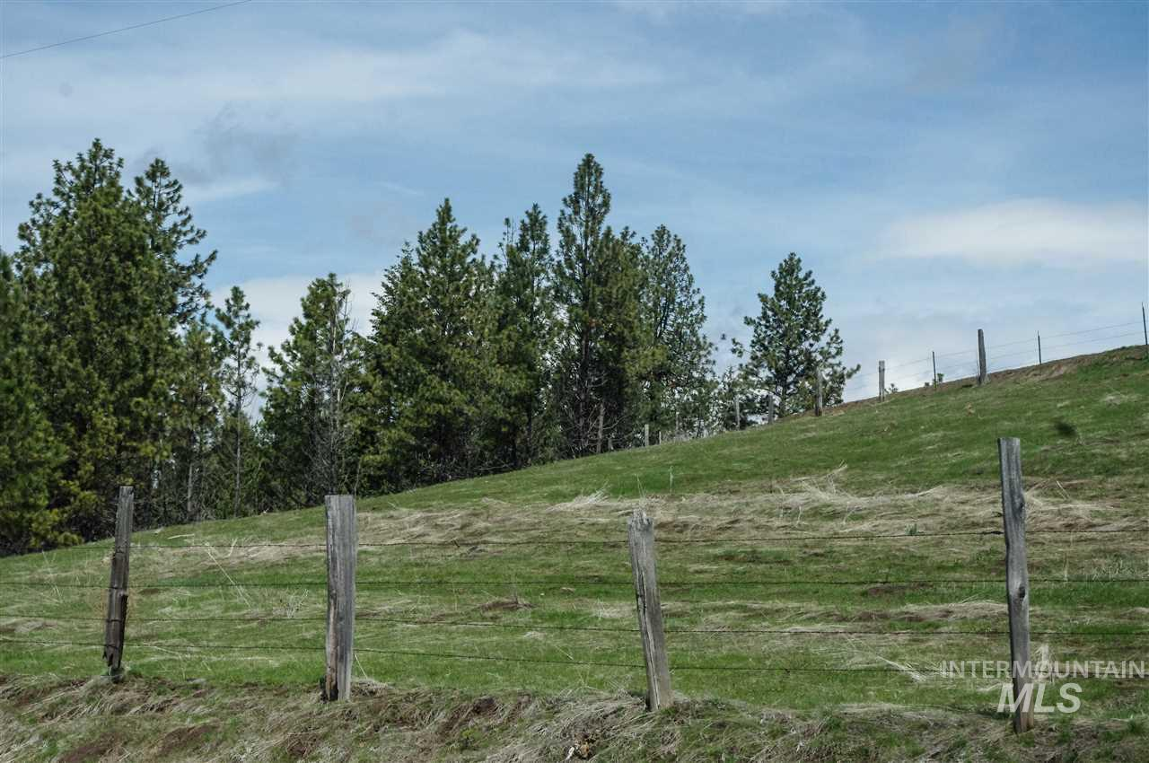 TBD Woodland - Photo 1