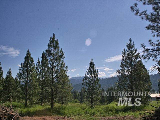 160 Scriver Woods, Garden Valley, ID 83622 (MLS #98734003) :: Jon Gosche Real Estate, LLC