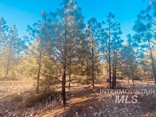 Lot 66 Ethan Way, Idaho City, ID 83631 (MLS #98807672) :: City of Trees Real Estate