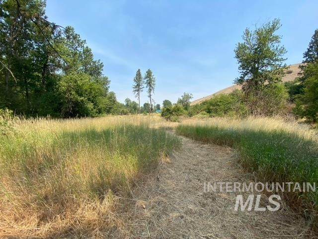 TBD Cottonwood Creek Road, Culdesac, ID 83524 (MLS #98810753) :: Epic Realty