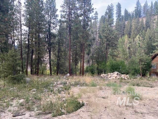 1064 E Paradise Dr, Pine, ID 83647 (MLS #98817957) :: New View Team