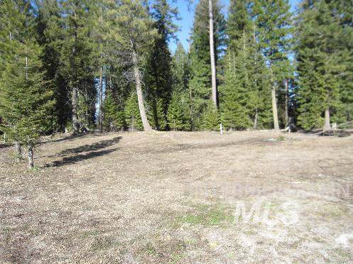 60 Clearwater Ct., Donnelly, ID 83615 (MLS #98714593) :: Build Idaho