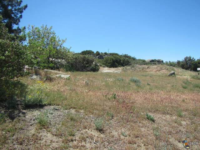29949 Canadian Honker Rd, Campo, CA 91906 (MLS #21786874IC) :: DMA Real Estate