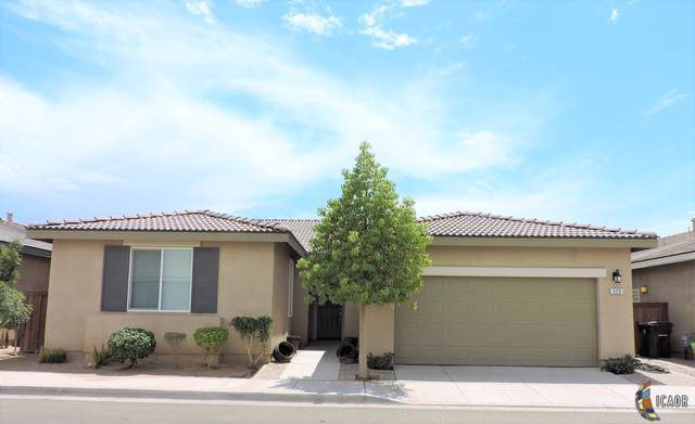 325 Blooming Canyon Pl, Brawley, CA 92251 (MLS #19497890IC) :: DMA Real Estate