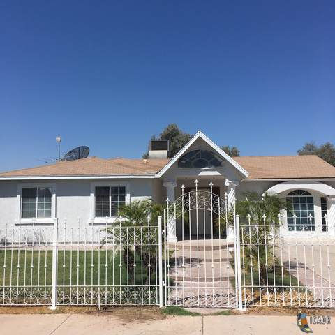 767 M Acuna Ave, Calexico, CA 92231 (MLS #19499042IC) :: DMA Real Estate