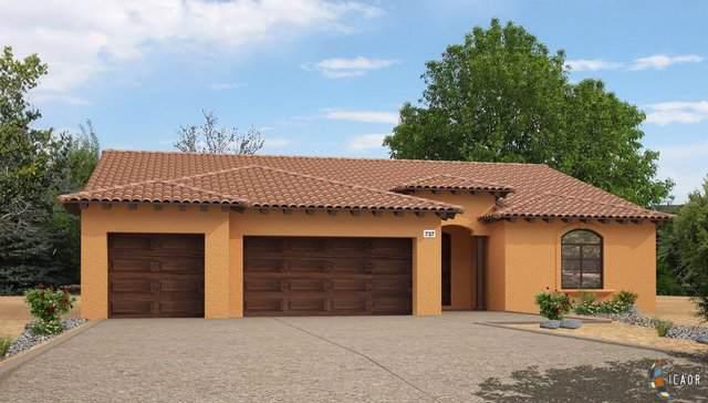 2142 Chaparral Dr, El Centro, CA 92243 (MLS #19528950IC) :: DMA Real Estate