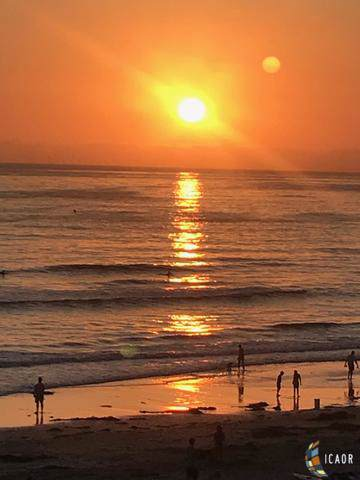 4667 Ocean - Photo 1