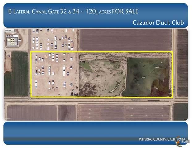 380 E Yocum Rd, Calipatria, CA 92233 (MLS #20571506IC) :: DMA Real Estate