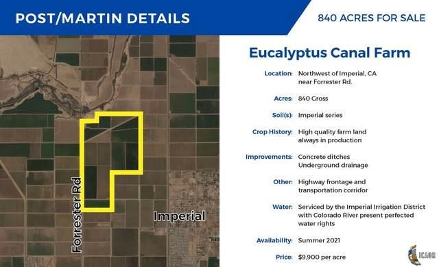 0 Eucalyptus 134, Imperial, CA 92251 (MLS #20624148IC) :: Duflock & Associates Real Estate Inc.