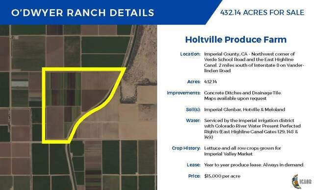 0 East Highline 129, Holtville, CA 92250 (MLS #20624486IC) :: Duflock & Associates Real Estate Inc.