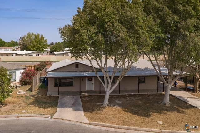 487 Ea Adler Ct, Brawley, CA 92227 (MLS #20632338IC) :: DMA Real Estate