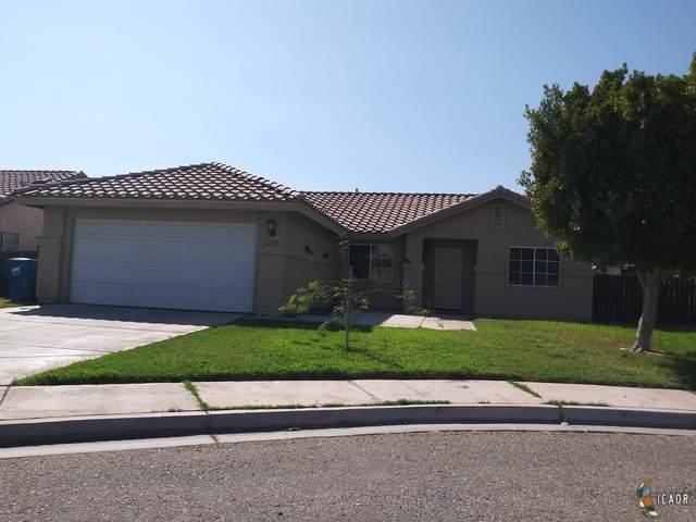 2359 C Sanchez Ct, Calexico, CA 92231 (MLS #20638190IC) :: DMA Real Estate