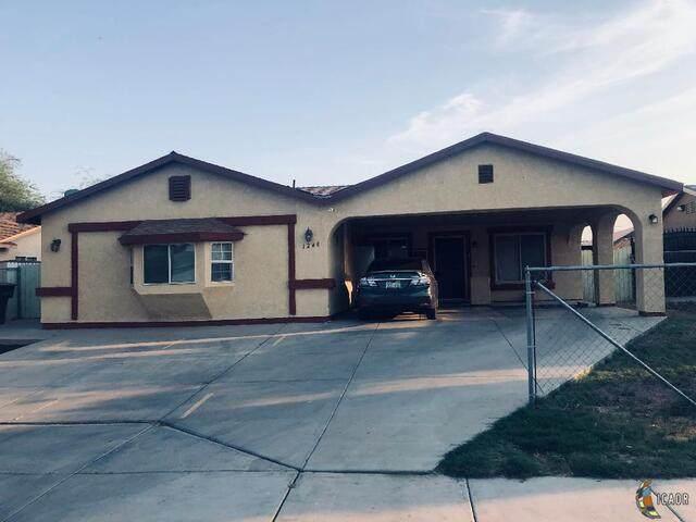 1248 Camino Del Rio, Calexico, CA 92231 (MLS #20646476IC) :: DMA Real Estate