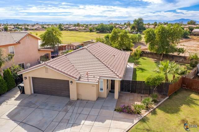 1224 R Tamayo St, Calexico, CA 92231 (MLS #20653524IC) :: DMA Real Estate