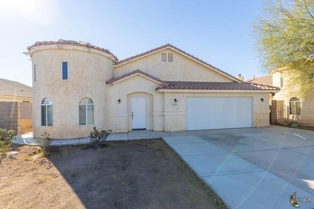 231 San Felipe Dr, Imperial, CA 92251 (MLS #21681796IC) :: DMA Real Estate