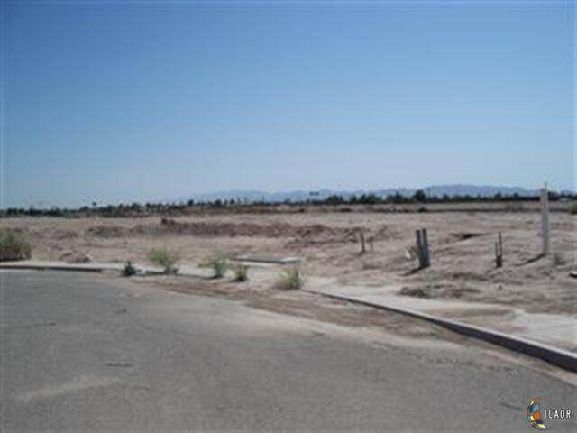 0 Sherman Ct, Calexico, CA 92231 (MLS #21726204IC) :: Duflock & Associates Real Estate Inc.