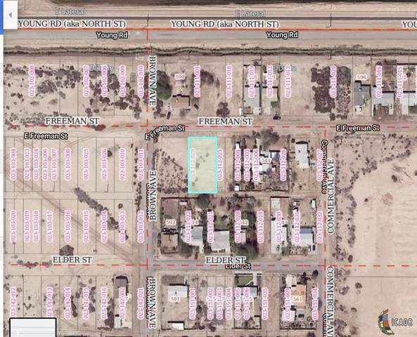 0 Freeman St, Calipatria, CA 92233 (MLS #19498338IC) :: DMA Real Estate