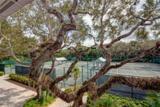 8866 Sea Oaks Way - Photo 29