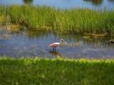 4866 Newport Island Drive - Photo 34