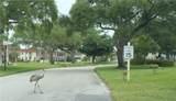 67 Royal Oak Drive - Photo 30