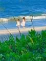 8880 Sea Oaks Way - Photo 20