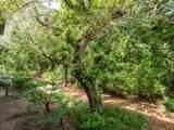 1275 Winding Oaks Circle - Photo 30