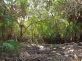 1645 Riomar Cove Lane - Photo 6