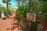 365 Grove Isle Circle - Photo 35