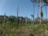 0 Tree Top Trail - Photo 1