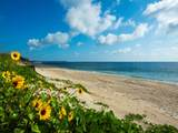 4450 Highway A1a - Photo 35