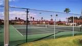 6 Vista Palm Lane - Photo 16